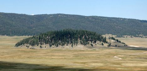 A forested lava dome in the midst of the Valle Grande, the largest meadow in the Valles Caldera National Preserve.