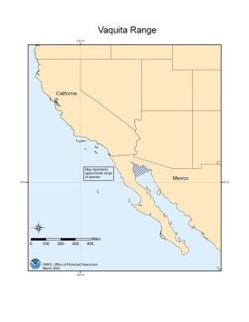 vaquita habitat map