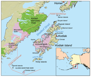 Why did a large number of endangered fin whales die in the waters around Kodiak Island? Map courtesy Wikipedia.