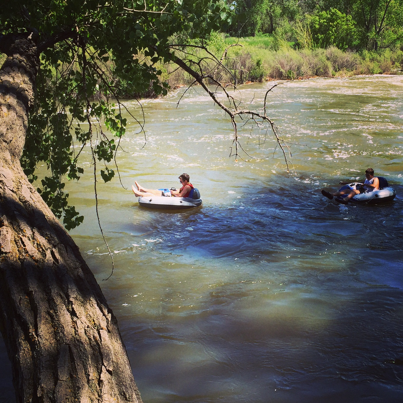 The South Platte is a recreation oasis on hot summer days along the Front Range.