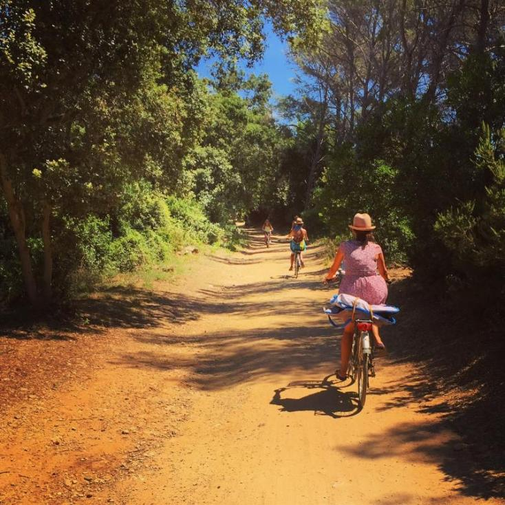 A Sunday cycle through the forests of Porquerolles Island.
