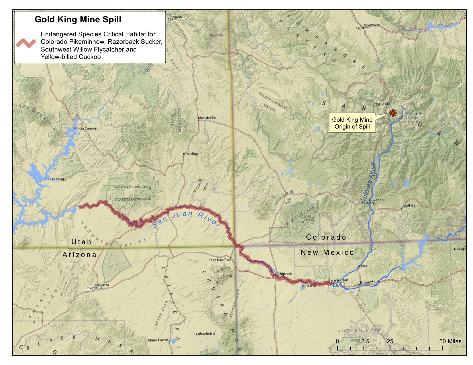 Huge mine spill fouls Colorados Animas River raising endangered