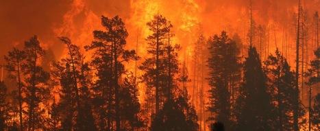 Wallow-fire-USFS-Ap-sit-NF-inferno-5812328293_6d2fe9b6cc_b_0 (1)