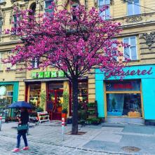 Siebensternplatz Wien