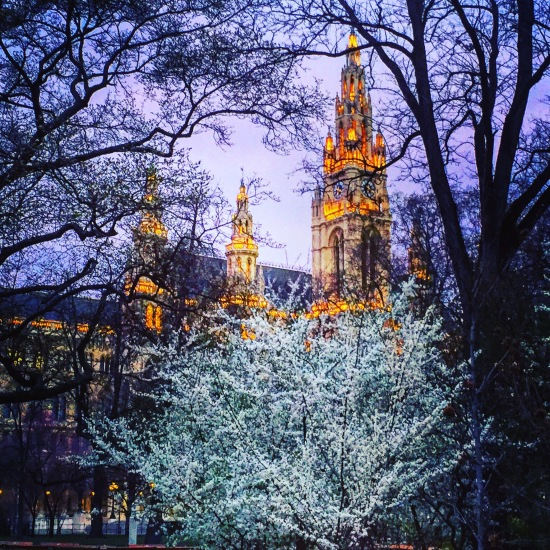 Rathaus twilight.