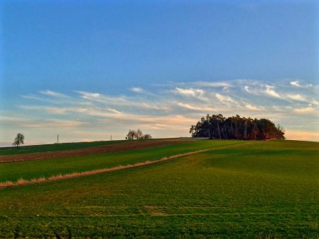 Green tinged fields in Lower Austria under an evening sky.