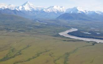 Alaska greening climate change