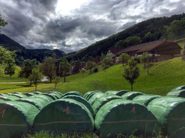 climate change austrian alps