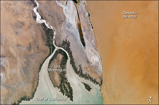 Colorado River delta