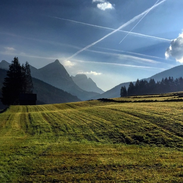 Mountain pastures in Austria help ensure local food security.